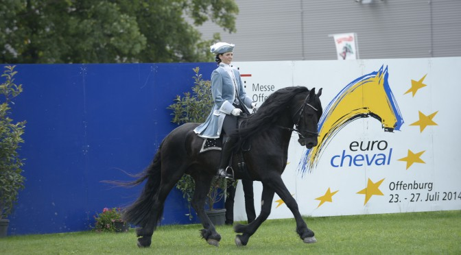 Pferde Sommer auf der Eurocheval 2016